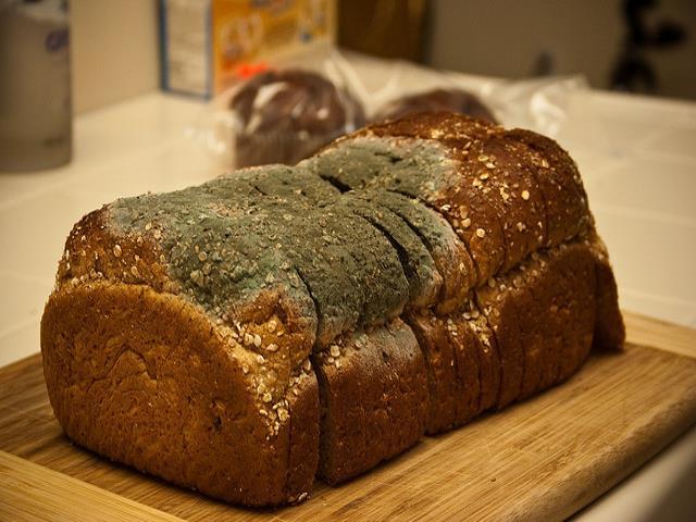 черный хлеб с плесенью