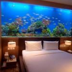 Почему нельзя ставить аквариум в спальне?