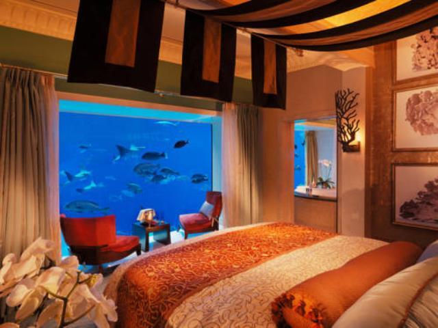 Фото на тему «Чому не можна ставити акваріум в спальні?»