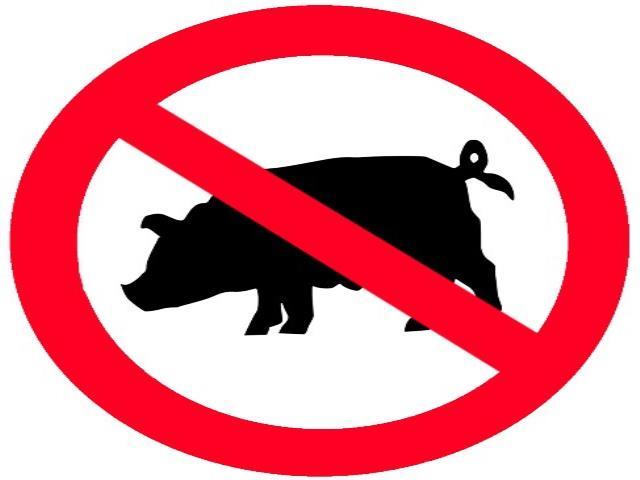 запрещенная свинья