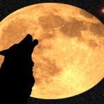 Почему нельзя смотреть на луну в полнолуние?