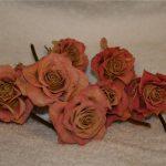 хранить засохшие розы