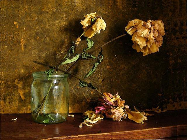 К засохшие снится чему вазах в цветы