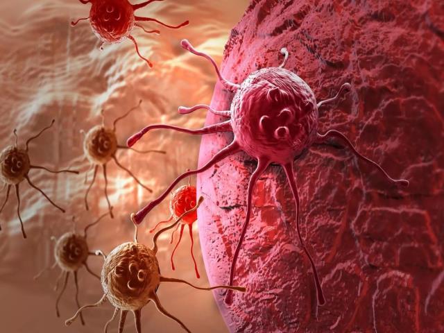нельзя вылечить рак