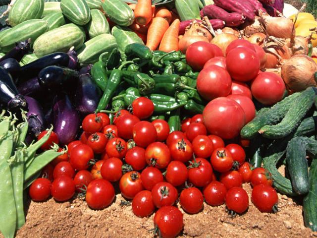 Америке выращивать овощи