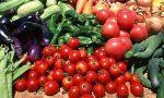 Почему в Америке нельзя выращивать овощи?