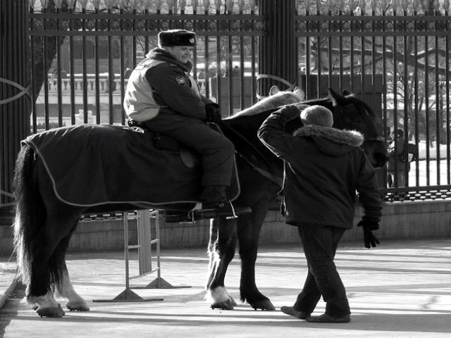 милиция на конях