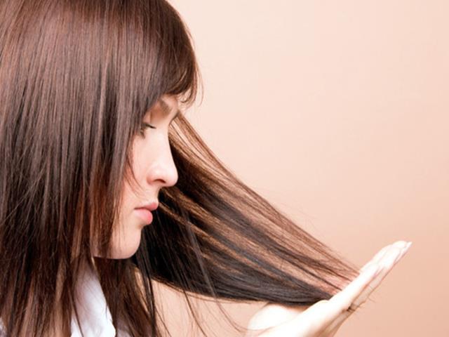 Фото на тему «Почему корневой волосок нельзя считать тканью?»