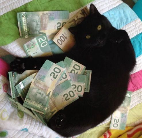 считать деньги вечером