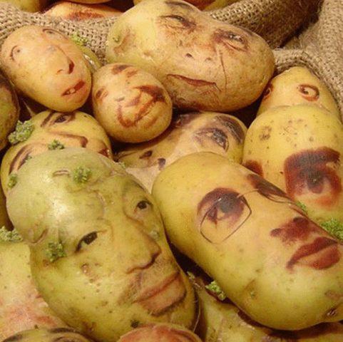 Фото на тему «Почему нельзя есть сырую картошку?»