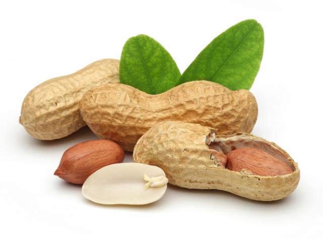 Почему нельзя есть арахис?