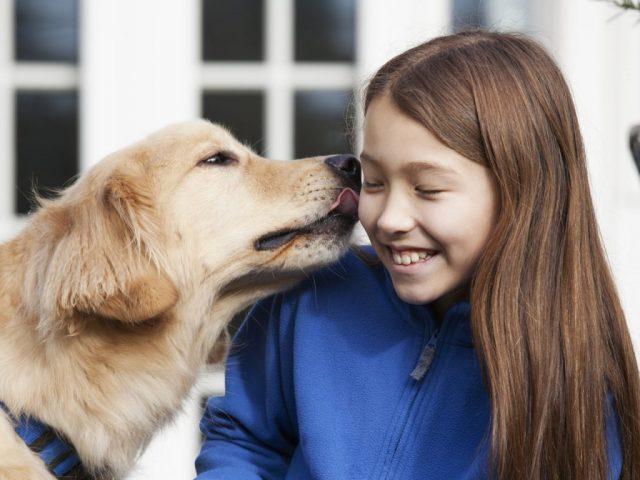 Почему нельзя целовать собак?