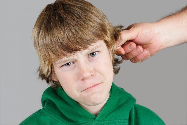 Почему нельзя дергать за уши?