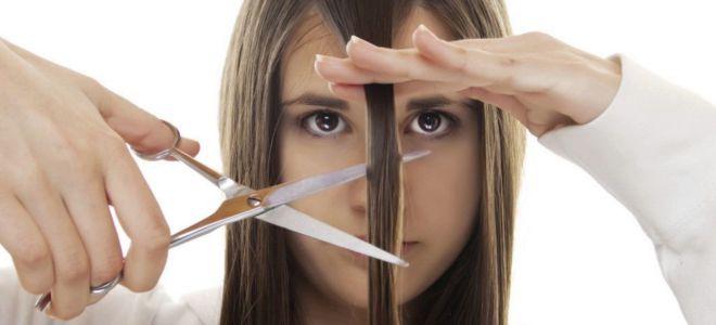 Фото на тему «Чому не можна викидати волосся?»