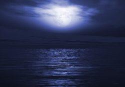 Фото на тему «Почему нельзя купаться в красном море ночью?»